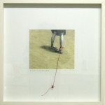 """To catch a mocking bird"" - Graphite, oil, thread, nail on paper, 40x40 cm, 2009 - Private collection"