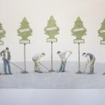 """""""Tree farm"""" - Graphite, watercolour on Fabriano Artistico 300lbs paper, 22 x 30 inches, 2015"""